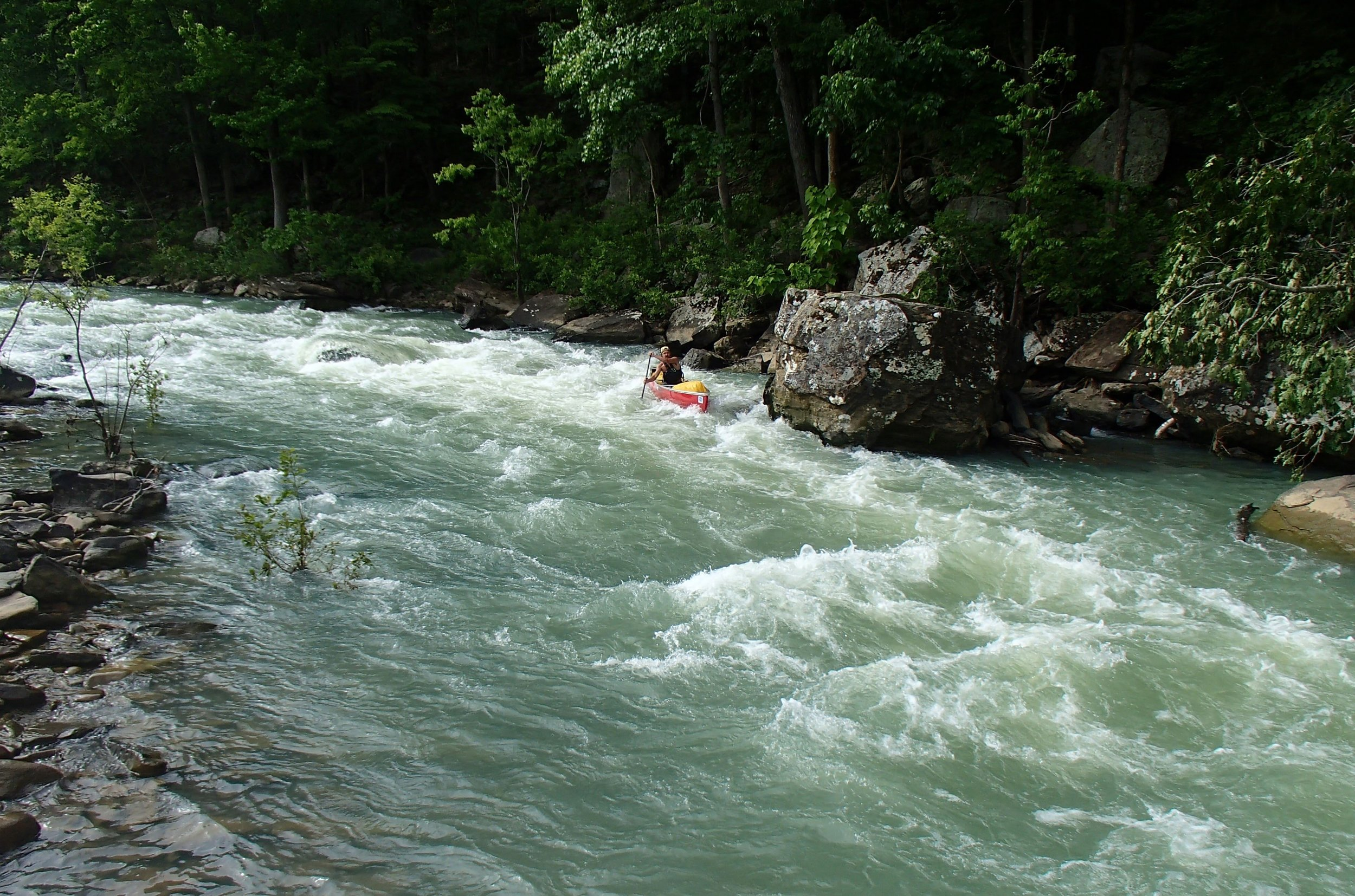 Big Piney, found in the heart of the Ozarks near Russellville, is only 67 miles long, but it offers some of the nicest floating in the state—when the water is at the correct level.
