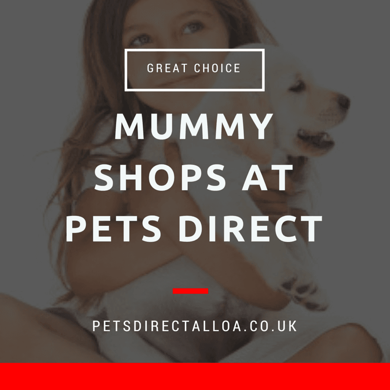 pet-shop-contact-alloa.jpg