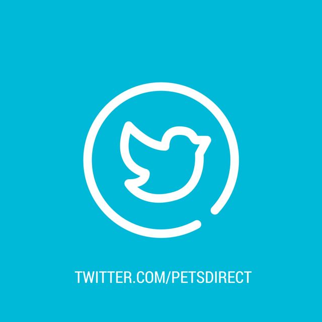 pets-direct-alloa-twitter-alloa-falkirk-stirling.jpg