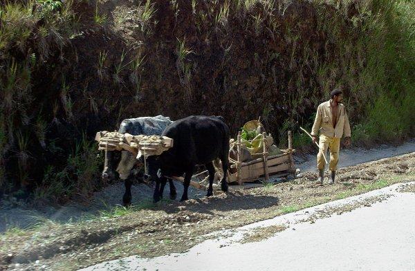 041019_jm_Cuba_056-2.jpg