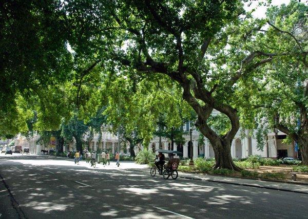 041023_jm_Cuba_2750-2.jpg