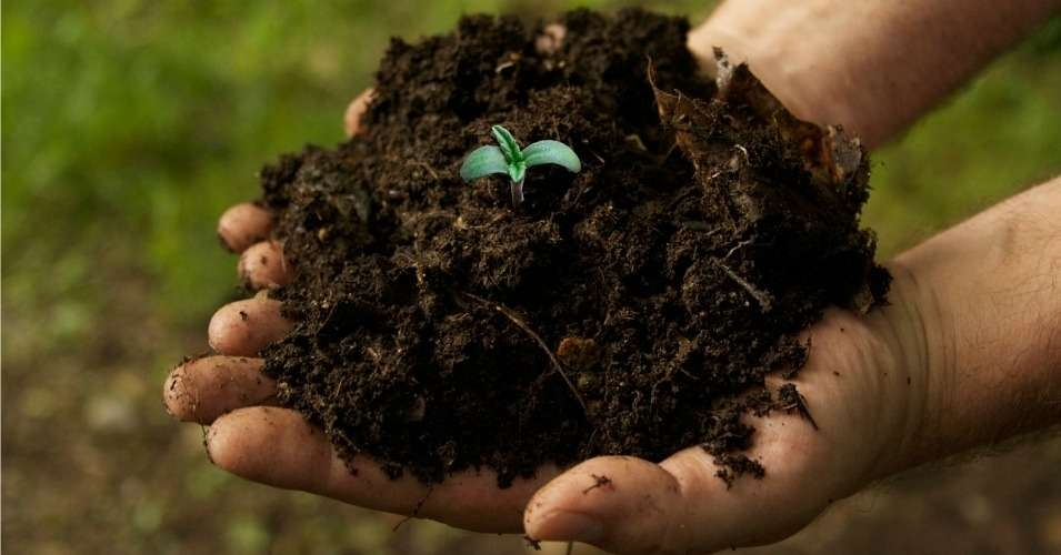 """""""The federal government has no problem subsidizing, to the tune of  $20 billion/year —GMO monoculture crops that degrade the soil and play a  significant role in making global warming worse."""" (Photo: commondreams.org)"""