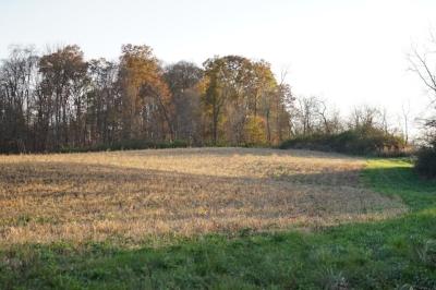 Field 4 late fall-2 smaller.jpg
