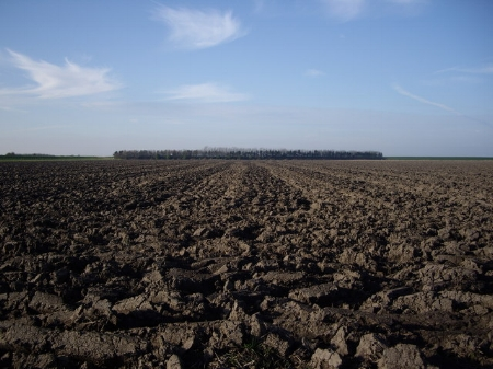 tilled soil.jpg