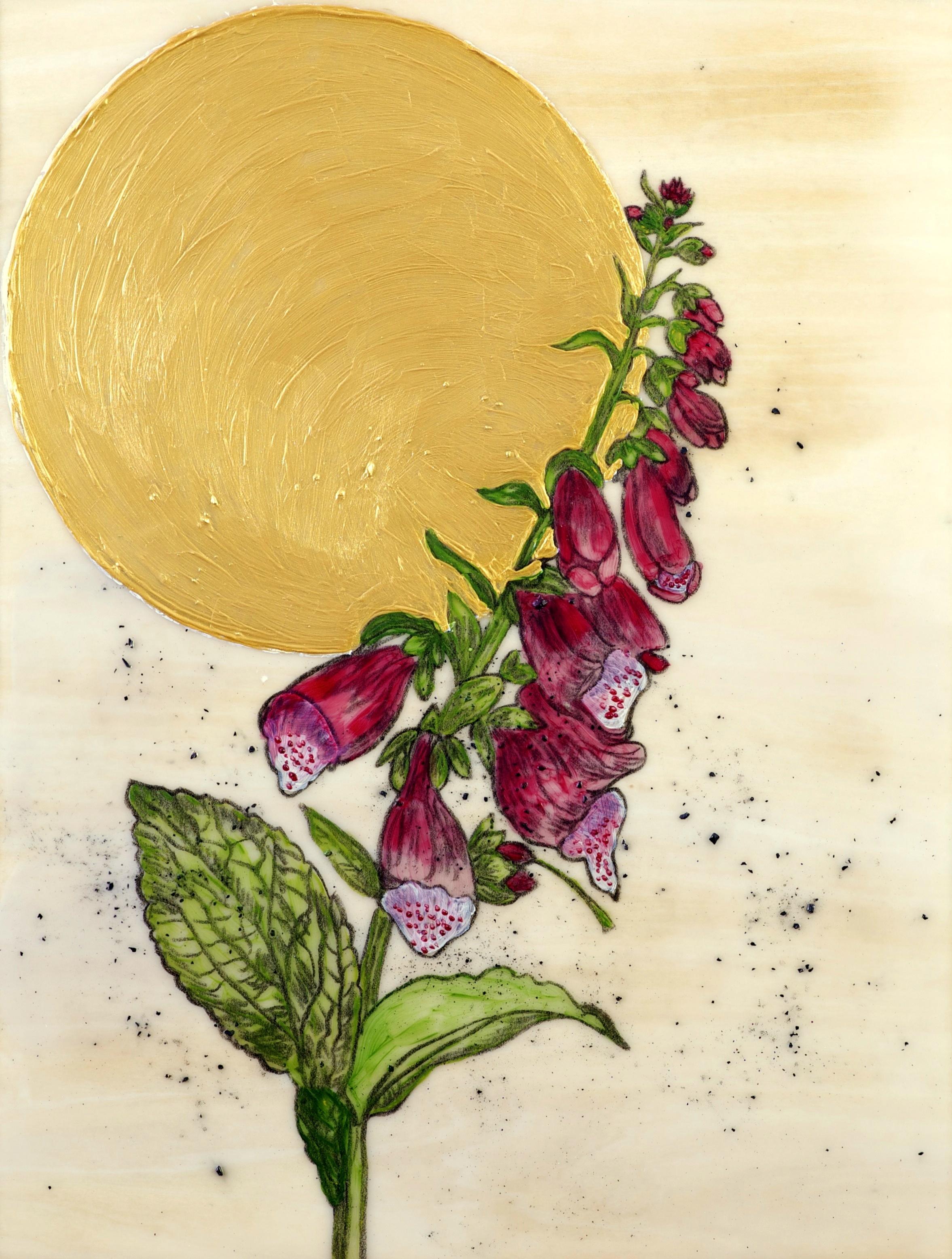 Foxglove by Salyna Gracie