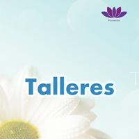 Talleres_Lnd_Img_SPA.jpg