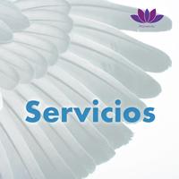 Servicios_Lnd_Img_SPA.jpg