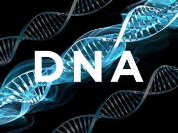 DNA_title.jpg