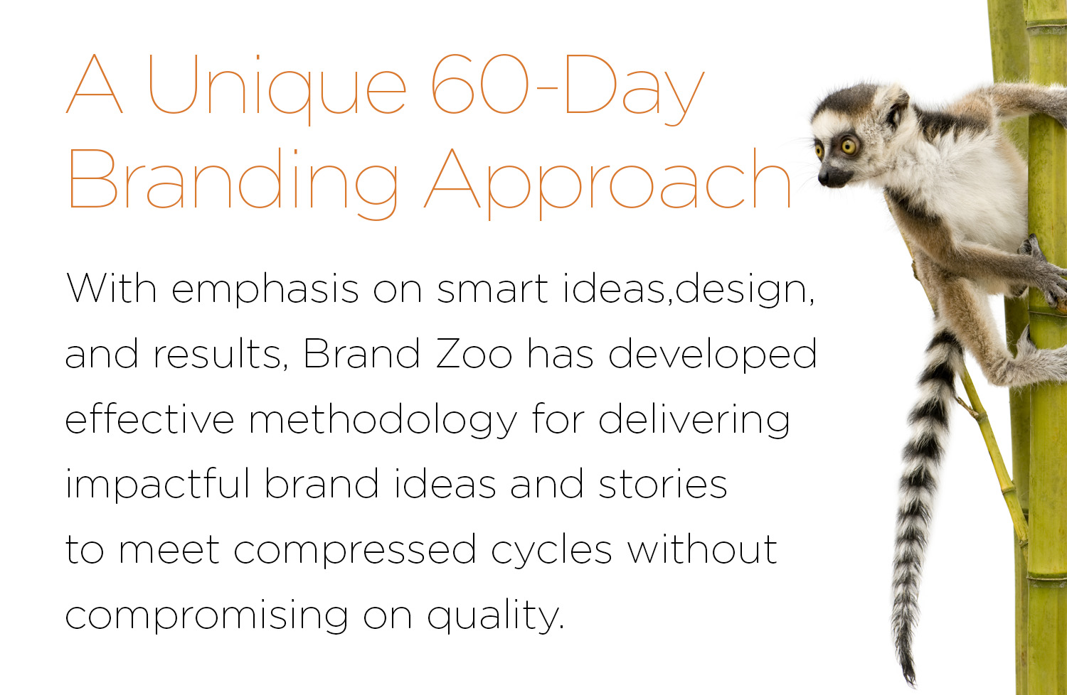 BrandZoo_About_60Day_Branding.jpg