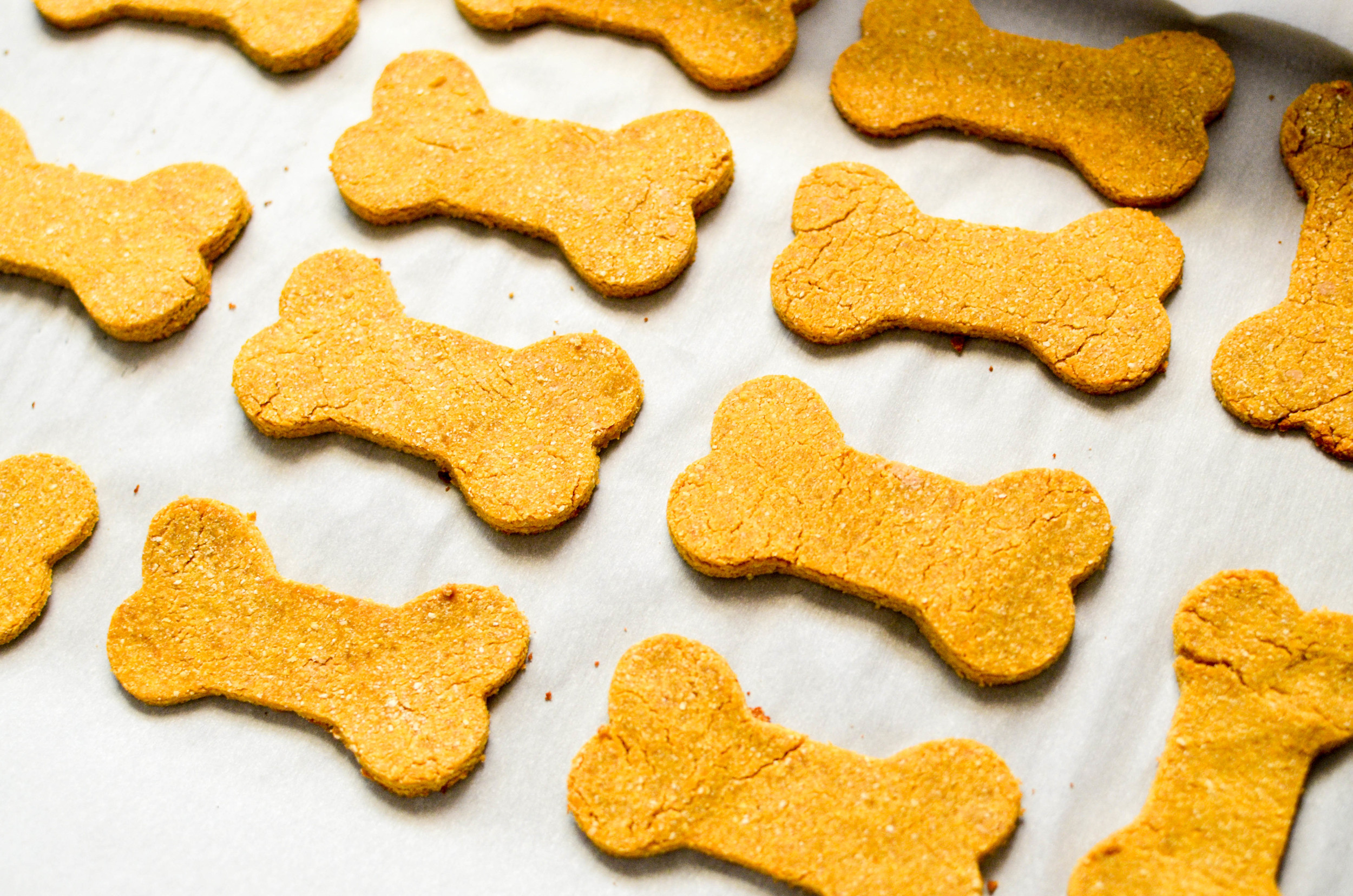 Dog Treats Organic 3 Ingredients Grain Free Tiffany Lieu