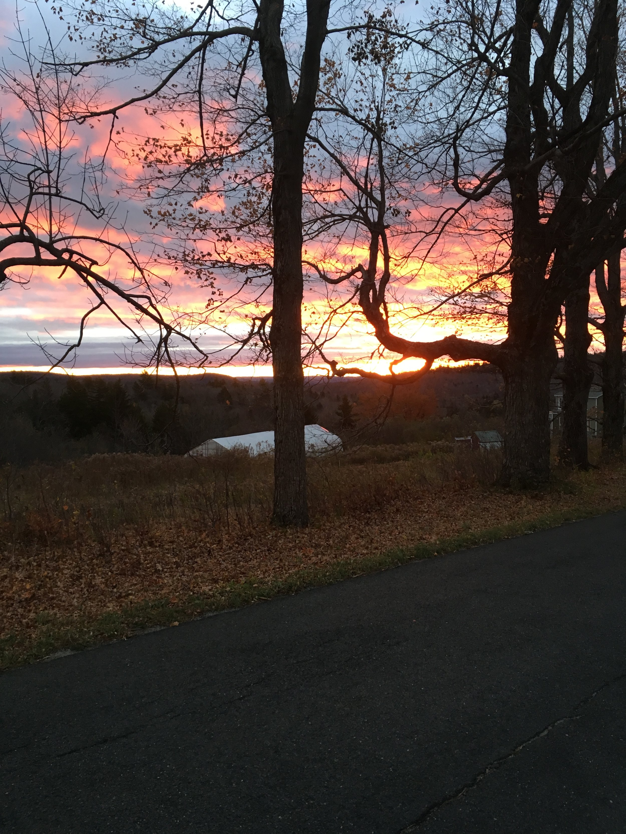 Sunrise, East Windsor Rd, Late October