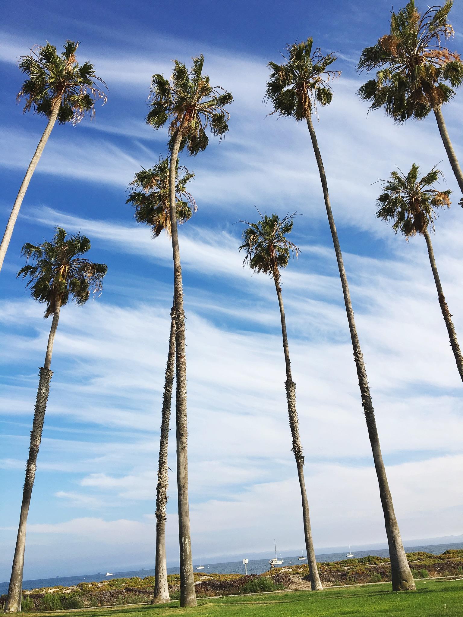 best santa barbara california airbnb