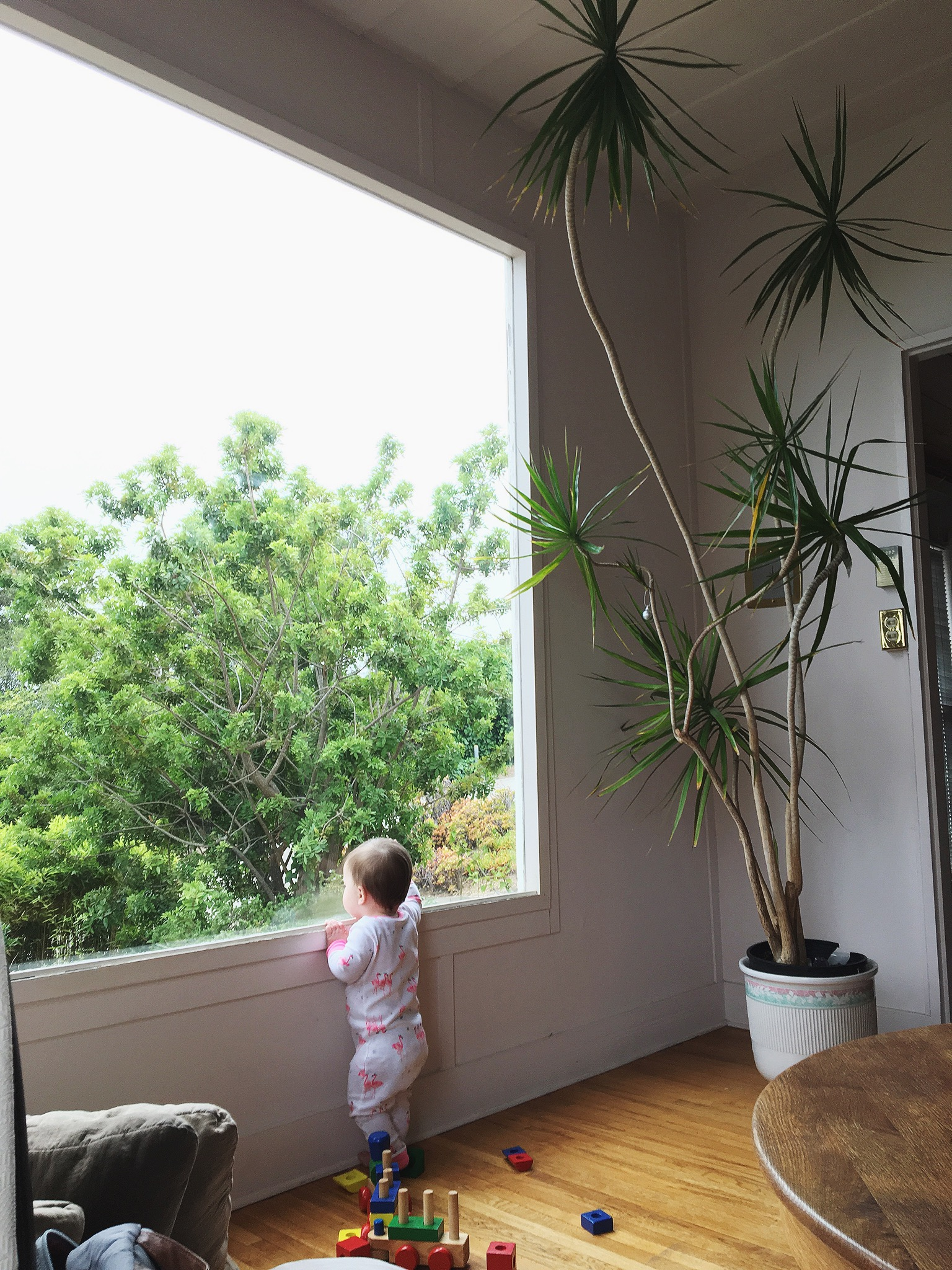 Even babies are drawn to what matters most–the simple, grand beauty of nature. Harriet looked out this window for long moments every day.