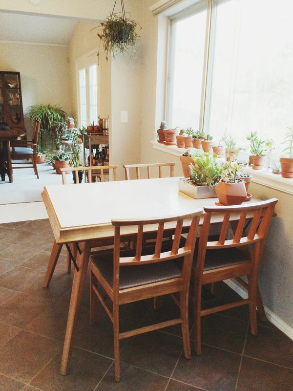 Our friend Drew's succulent collection: see his  home tour