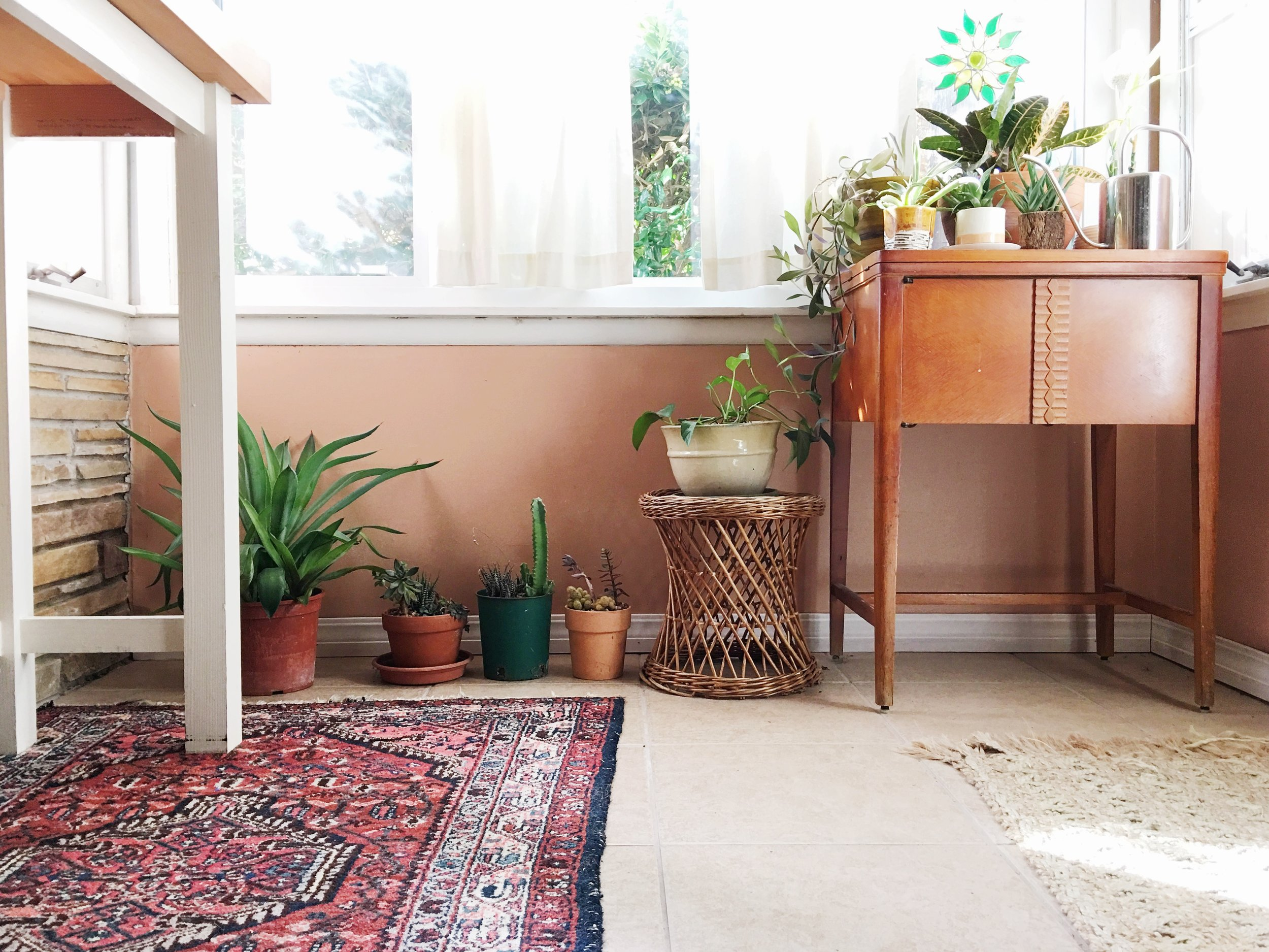 wintering plants