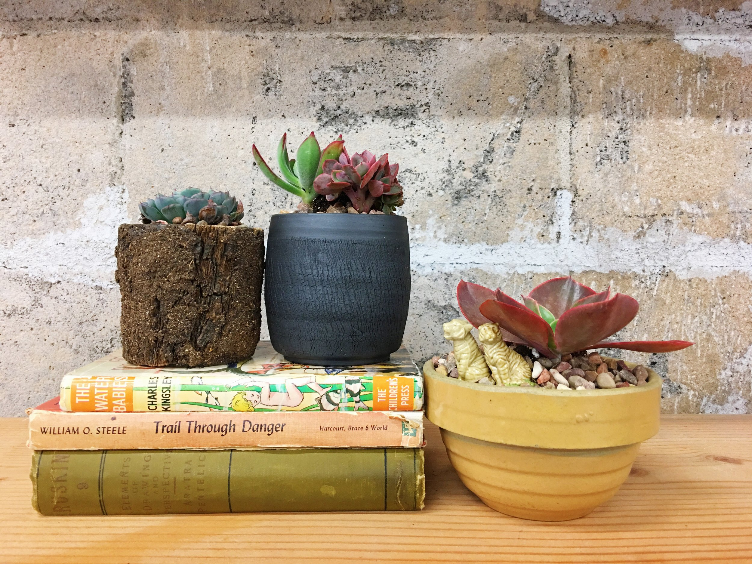 We love using vintage, new, and hand-crafted planters (like the hand-thrown black clay vessel by local artist, Foxy Pots). // These are all available and waiting to be planted at our shop.