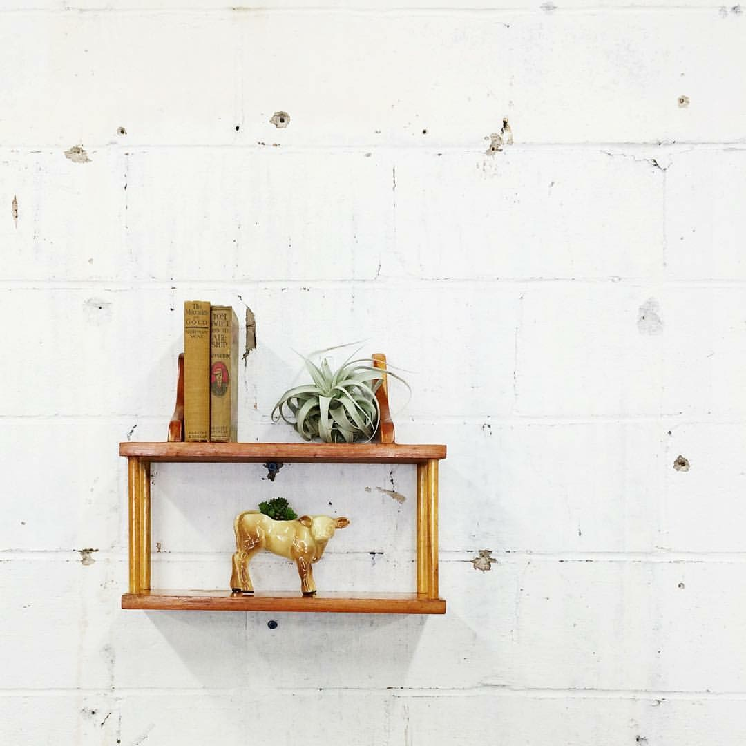 Just nestle one on a shelf! Air-plants love sitting on shelves. #easypeasy
