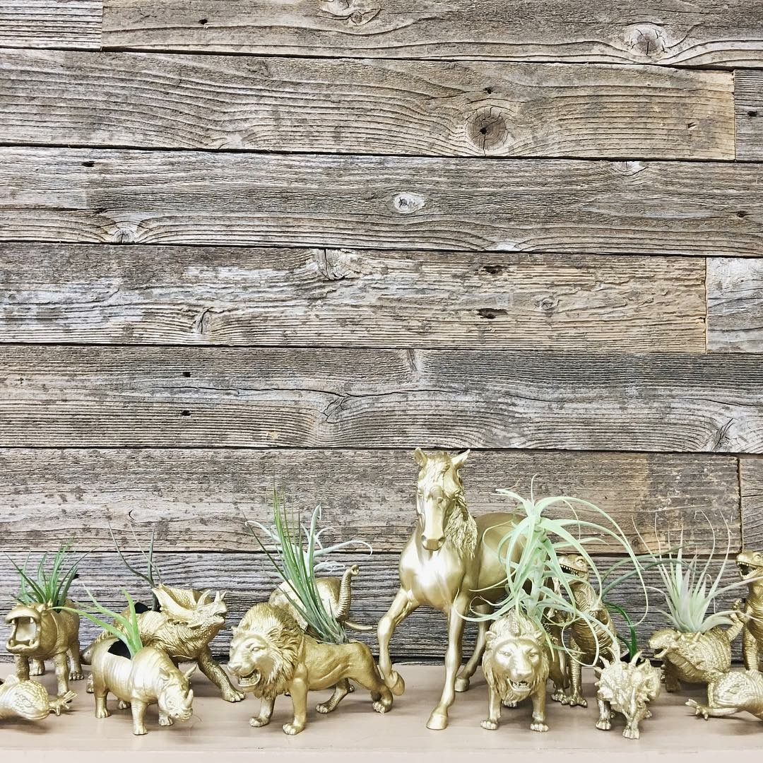 Find plastic animals and dinosaurs (not hard plastic, the softer plastic), spray paint them gold and cut holes in their backs for air-plants! Garage sales and flea markets are great sources to find these critters. Or you can skip all the work and buy them at Retro Den!