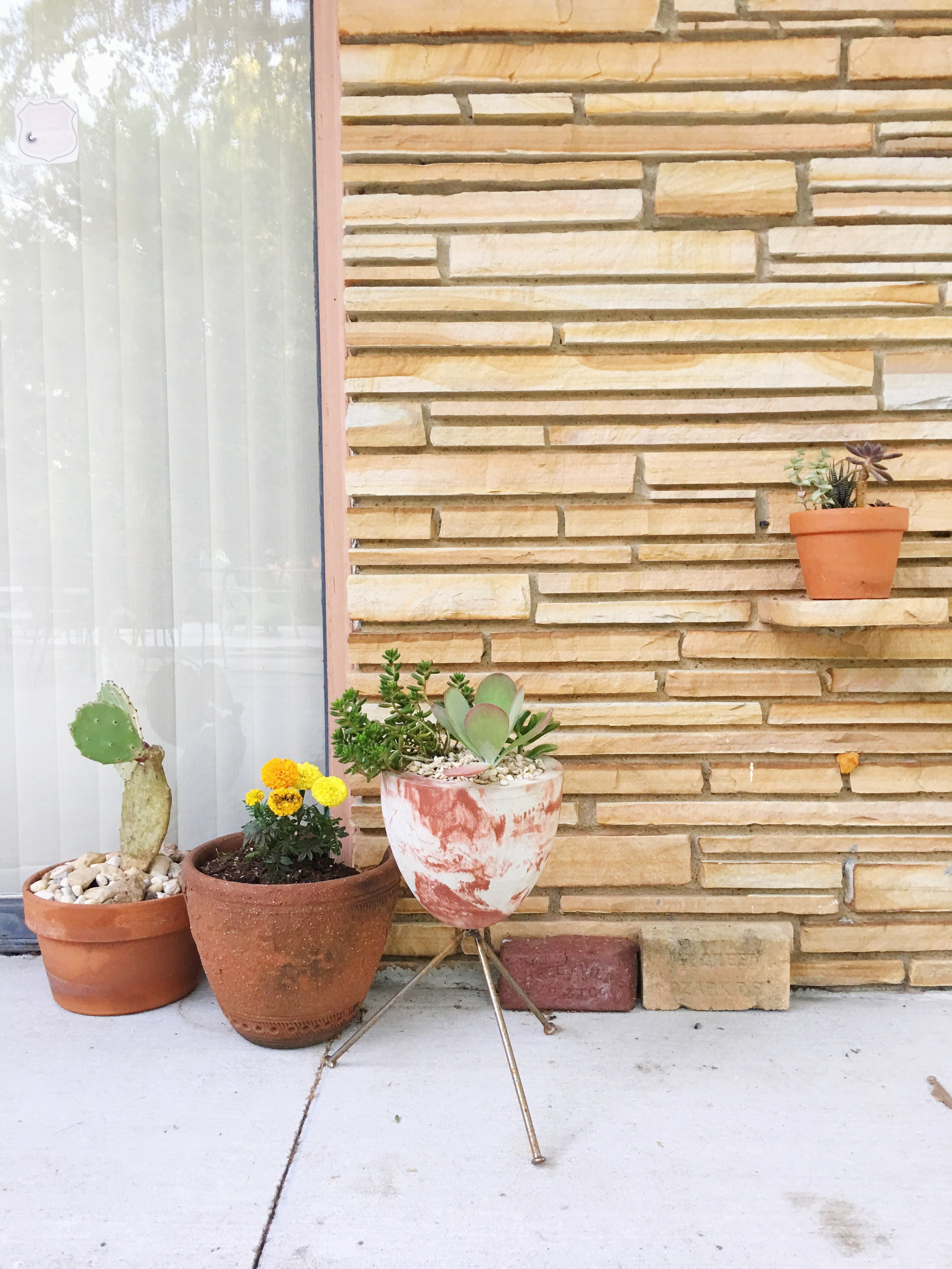 Loving the plain and simple terracotta pots plus handmade marbled concrete bullet planters by Tulsa's Atomic Studio.