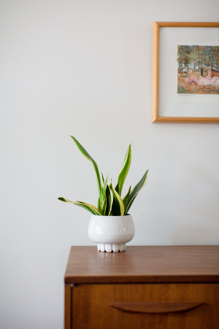 This Frankoma planter in Palmer's home is from an estate sale.