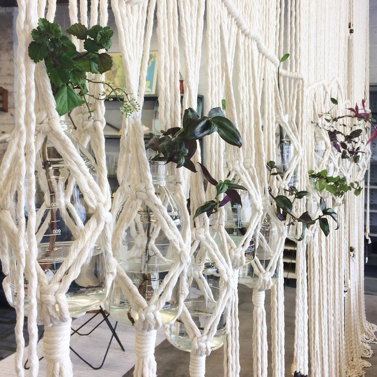 Our giant macrame wall of plant goodness by  House Sparrow Fine Nesting !