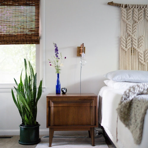 Cottage Hill - A Beginner's Guide to Houseplants