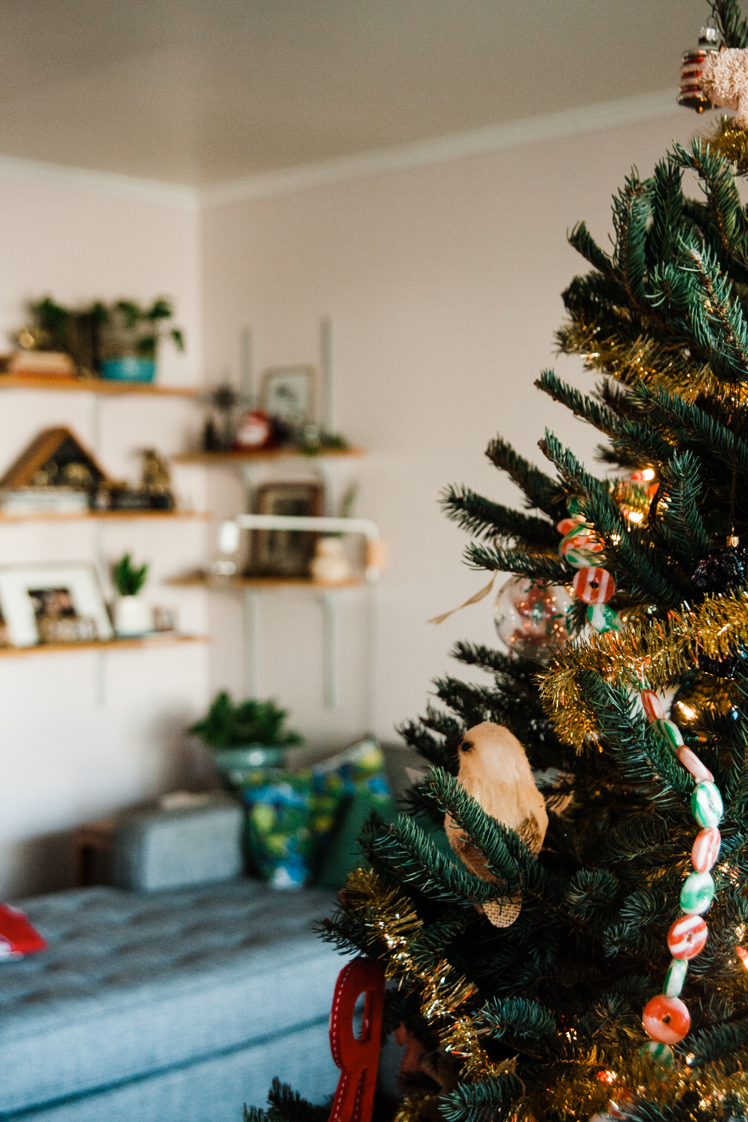 daly holiday home tour-6.jpg