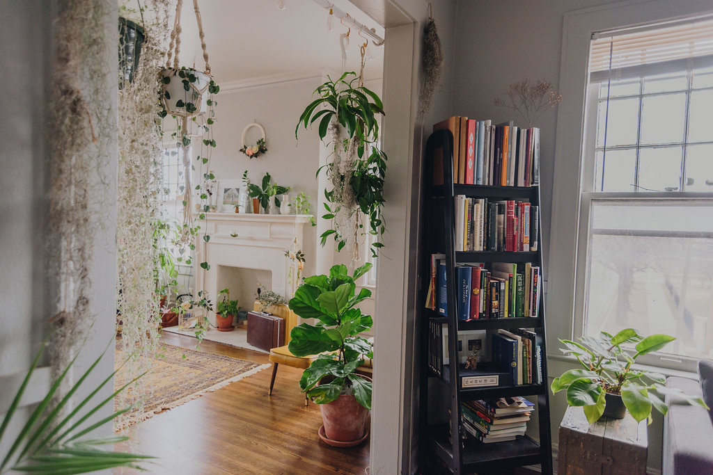 colorful+plant-filled+apartment.jpg