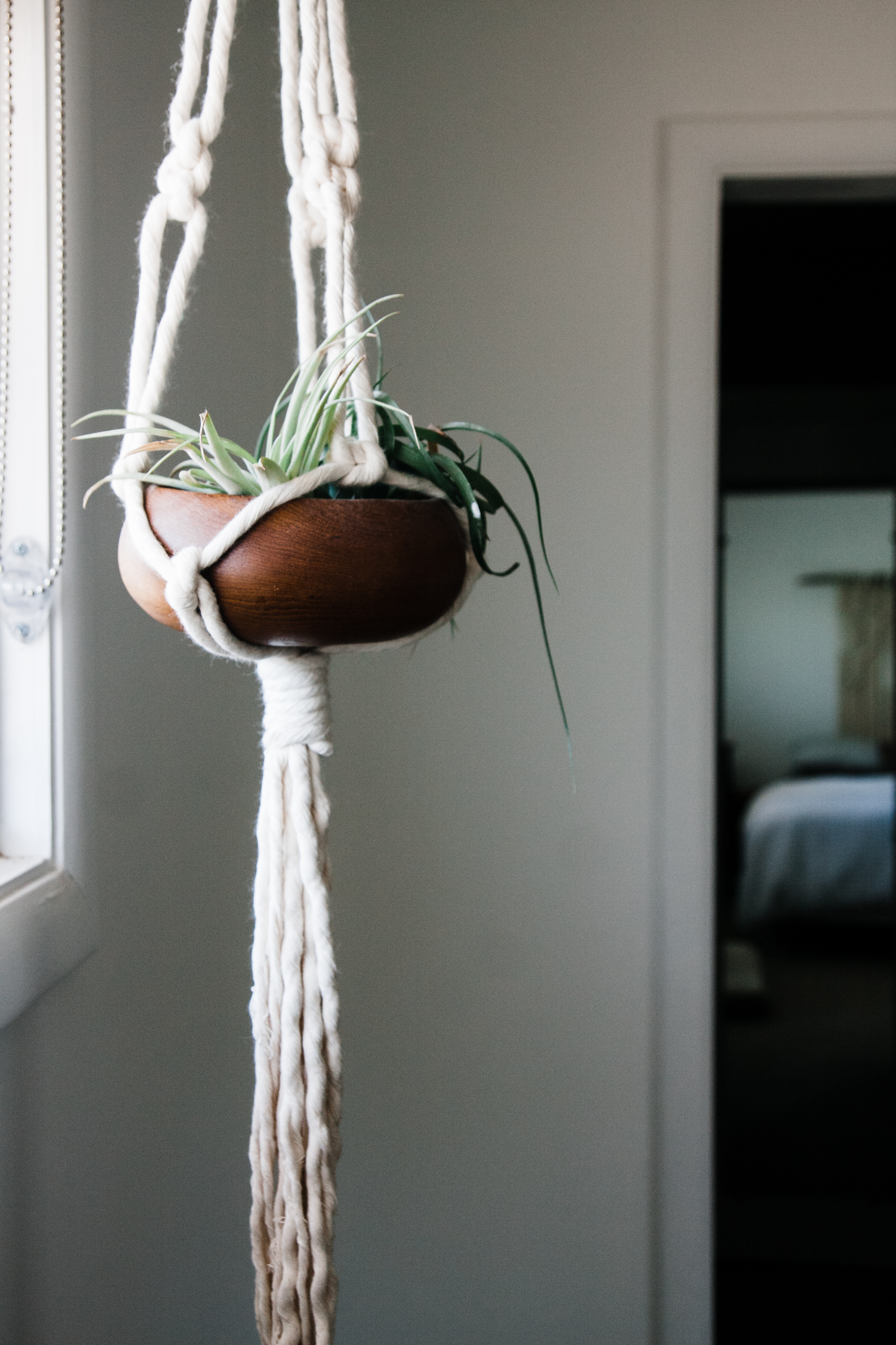 My  House Sparrow  macrame plant hanger is the only thing on this window wall. Keeping it simple or just incomplete? You tell me.