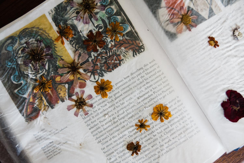 pressed-flower-art-BLOG-3.jpg