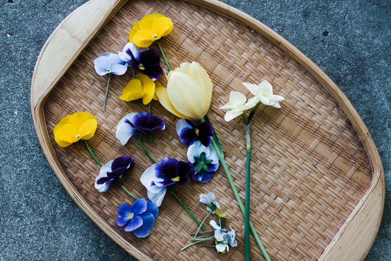 pressed-flower-art-BLOG-9.jpg