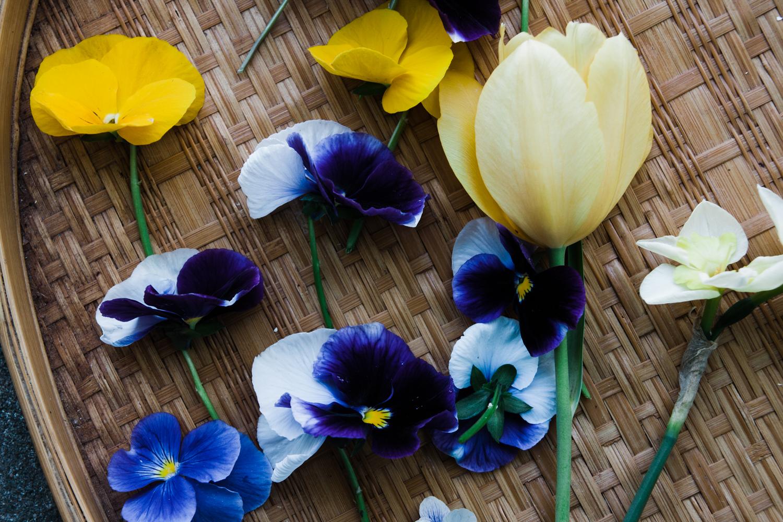 pressed-flower-art-BLOG-11.jpg