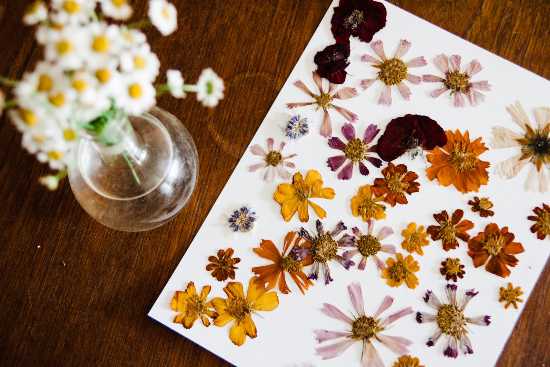 pressed-flower-art-BLOG-14.jpg