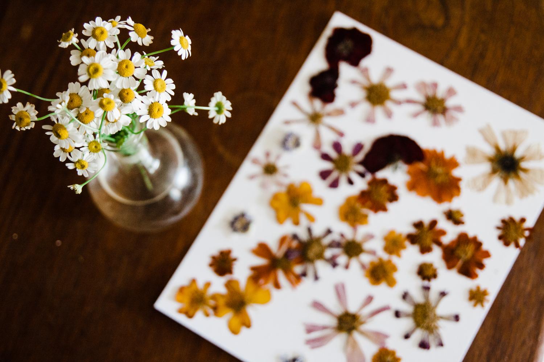 pressed-flower-art-BLOG-16.jpg