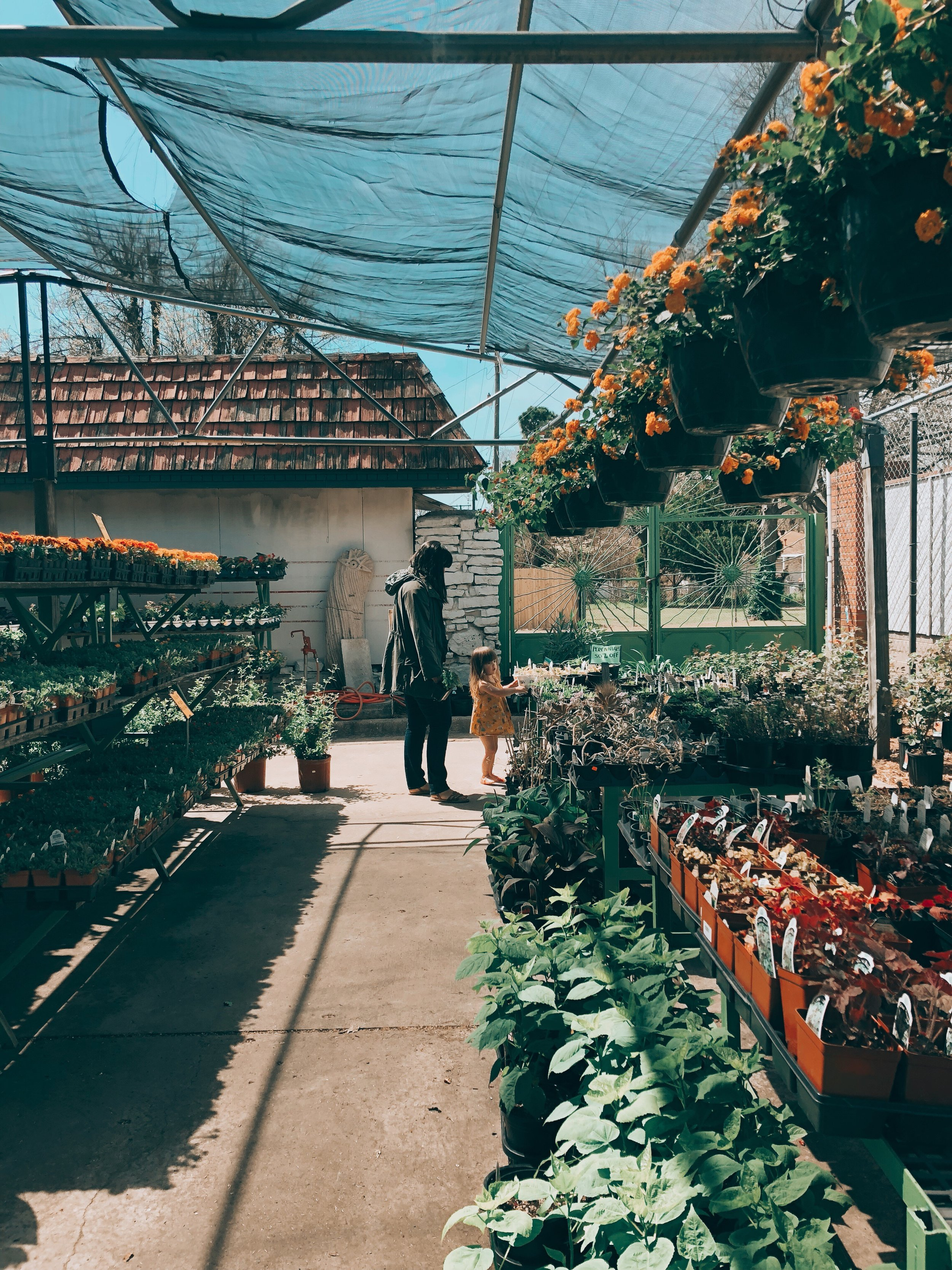 Daly has been making the rounds to Tulsa's local nurseries. This past week, she checked out  Rancho Flores , and it did not disappoint. A nice curation + great prices on large pots. Photo:  You Are Photo Co.