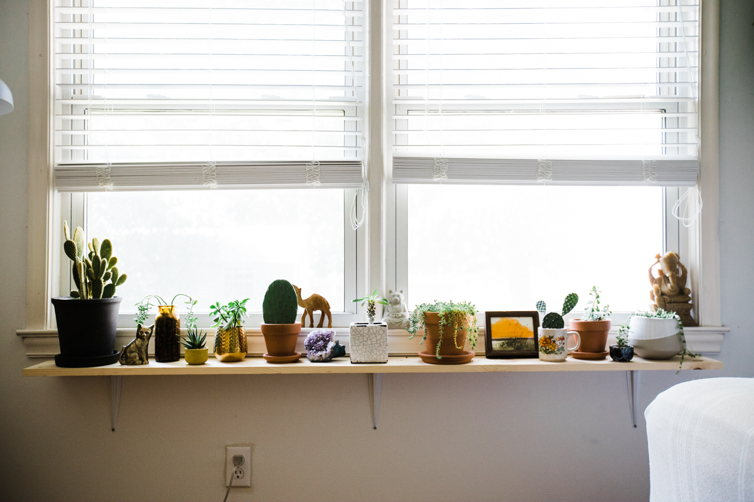 Holly's guest room    plant shelf is filled with plants and other colorful chotskies.