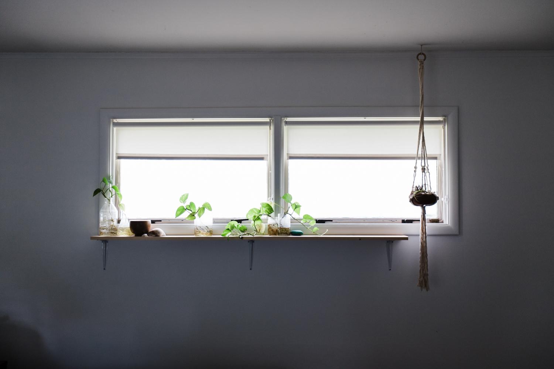 Palmer off-set her bedroom plant shelf to make room for her    House Sparrow    macrame hanger.