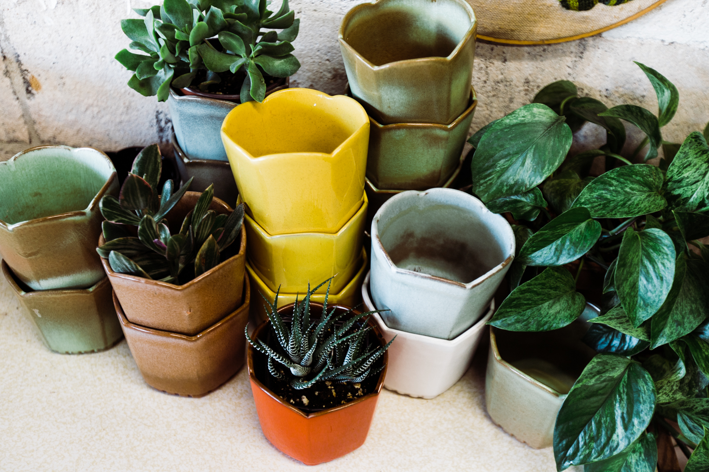Frankoma-planters-WEB-4.jpg