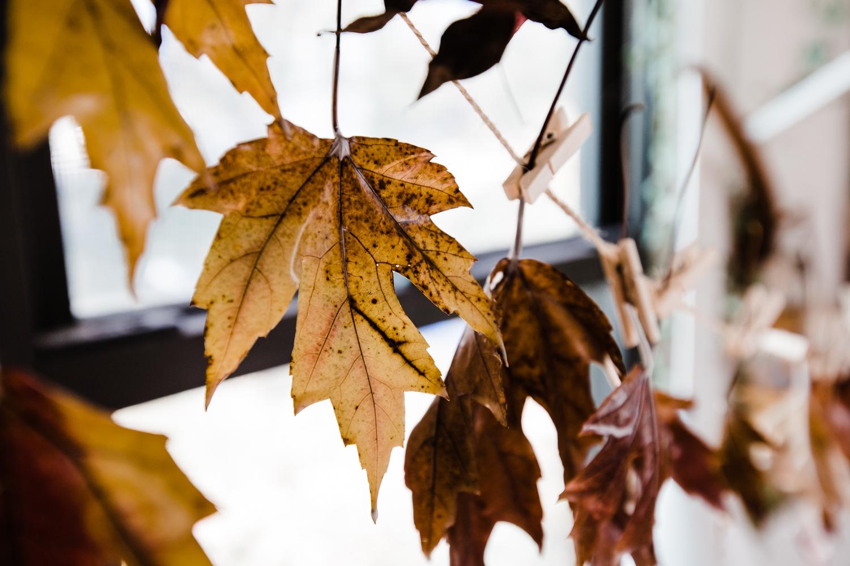 Wax_Leaves-10.jpg