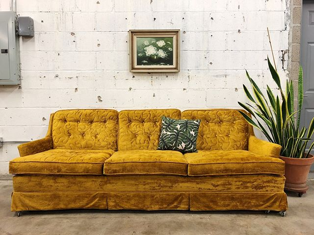 All your yellow sofa dreams come true...☀️🌟🌻⁠ ⁠ ⁠ ⁠ #oklahoma #oklahomablogger #tulsa #tulsaoklahoma #instatulsa #vintagetulsa #tulsavintage #shoptulsa⁠ #retroden #retrodentulsa #rdathome #lifeonabeautifulbackground #oldplusnew⁠ #shoptulsafirst #tulsashopping #shoplocaltulsa #shopsmalltulsa #tulsafurniture #tulsamodern #moderntulsa ⁠