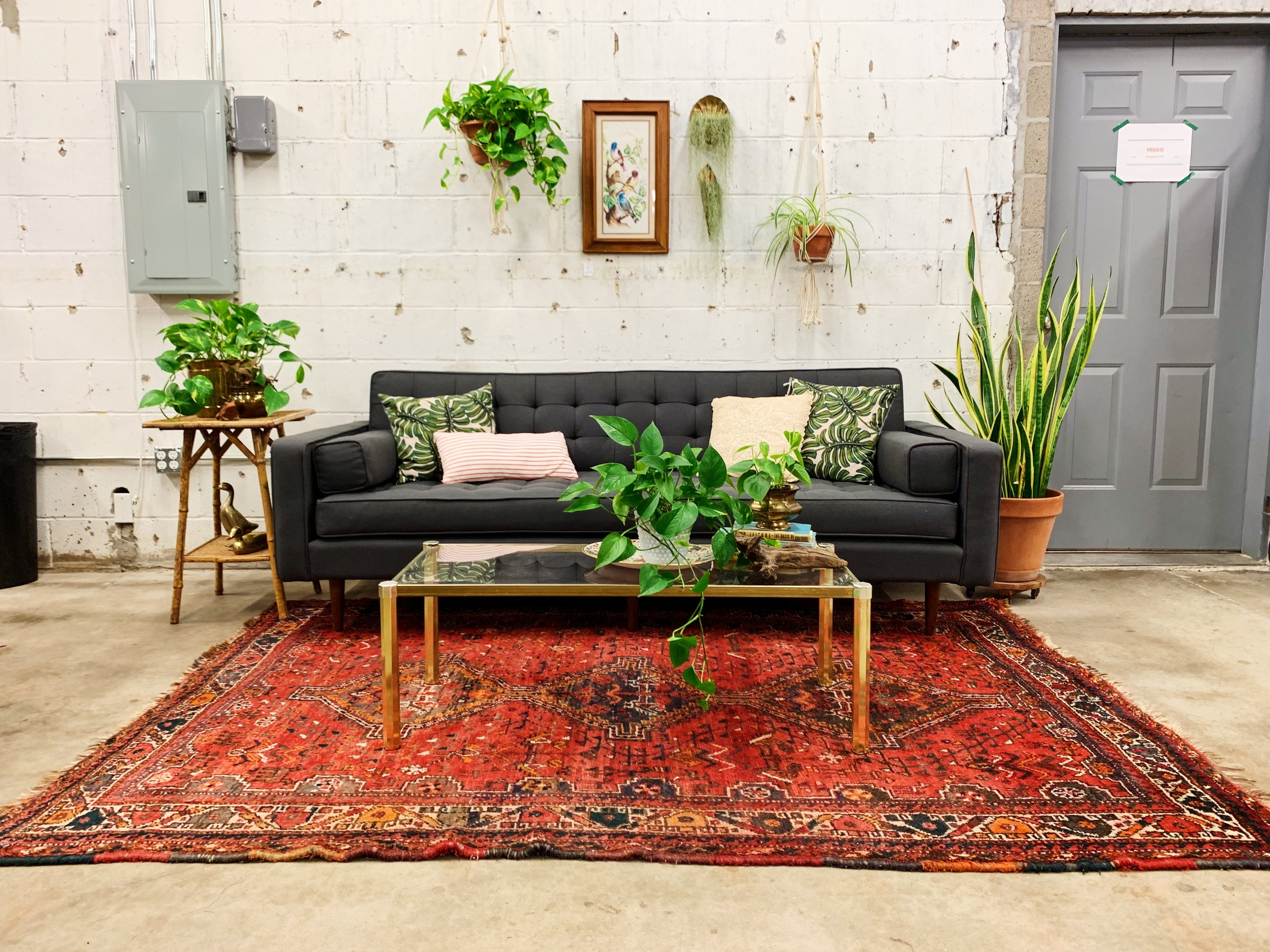 Tulsa Oklahoma Gus Modern Plant Lady Style Houseplants Living Room Furniture Decor