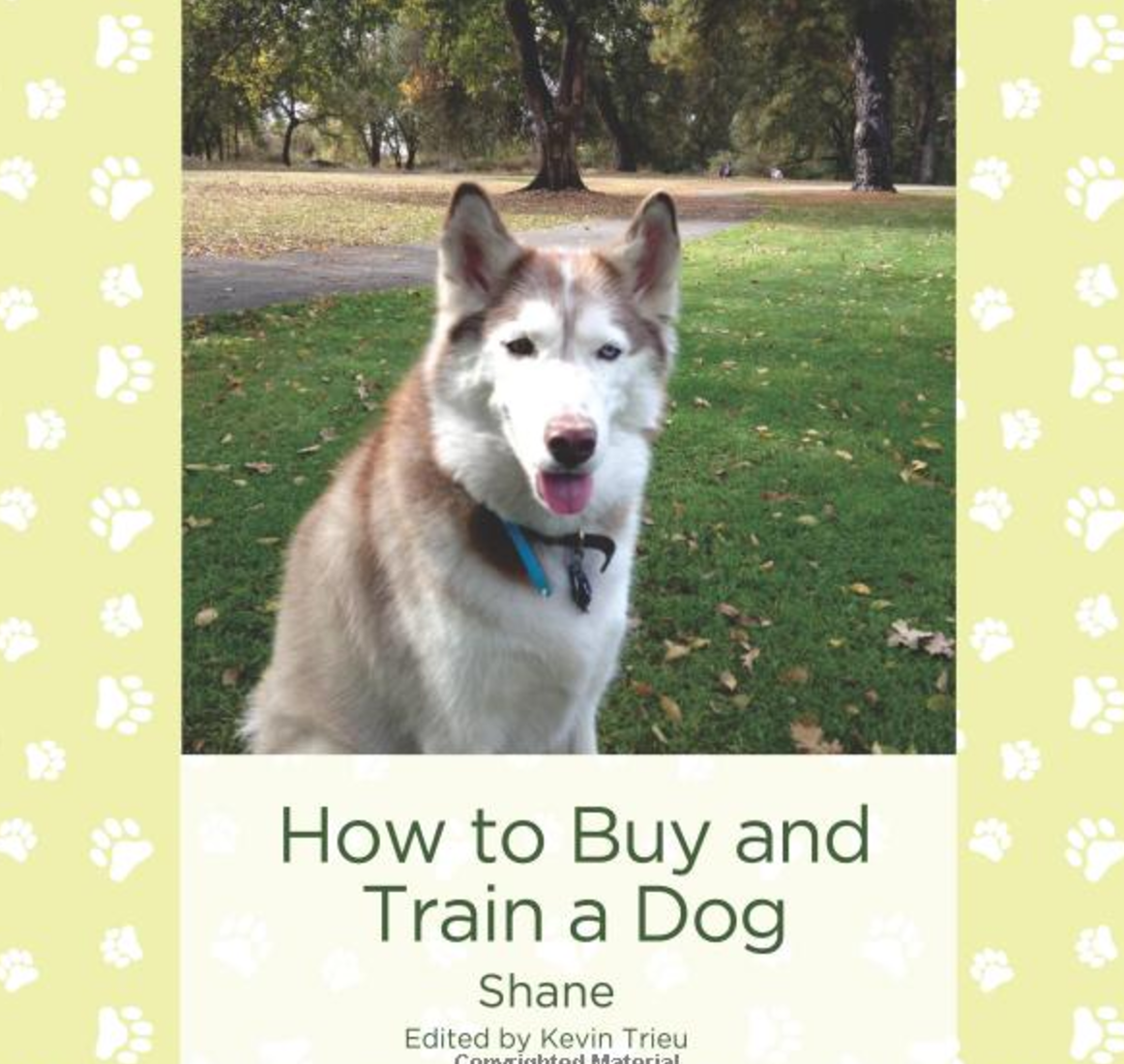 How to Buy and Train a Dog   How to Buy and Train a Dog provides the beginning reader with everything he or she needs to know about getting a new dog. Spanish/English cognates guide the dual language learner to look for similarities across the two languages.   Buy this book.
