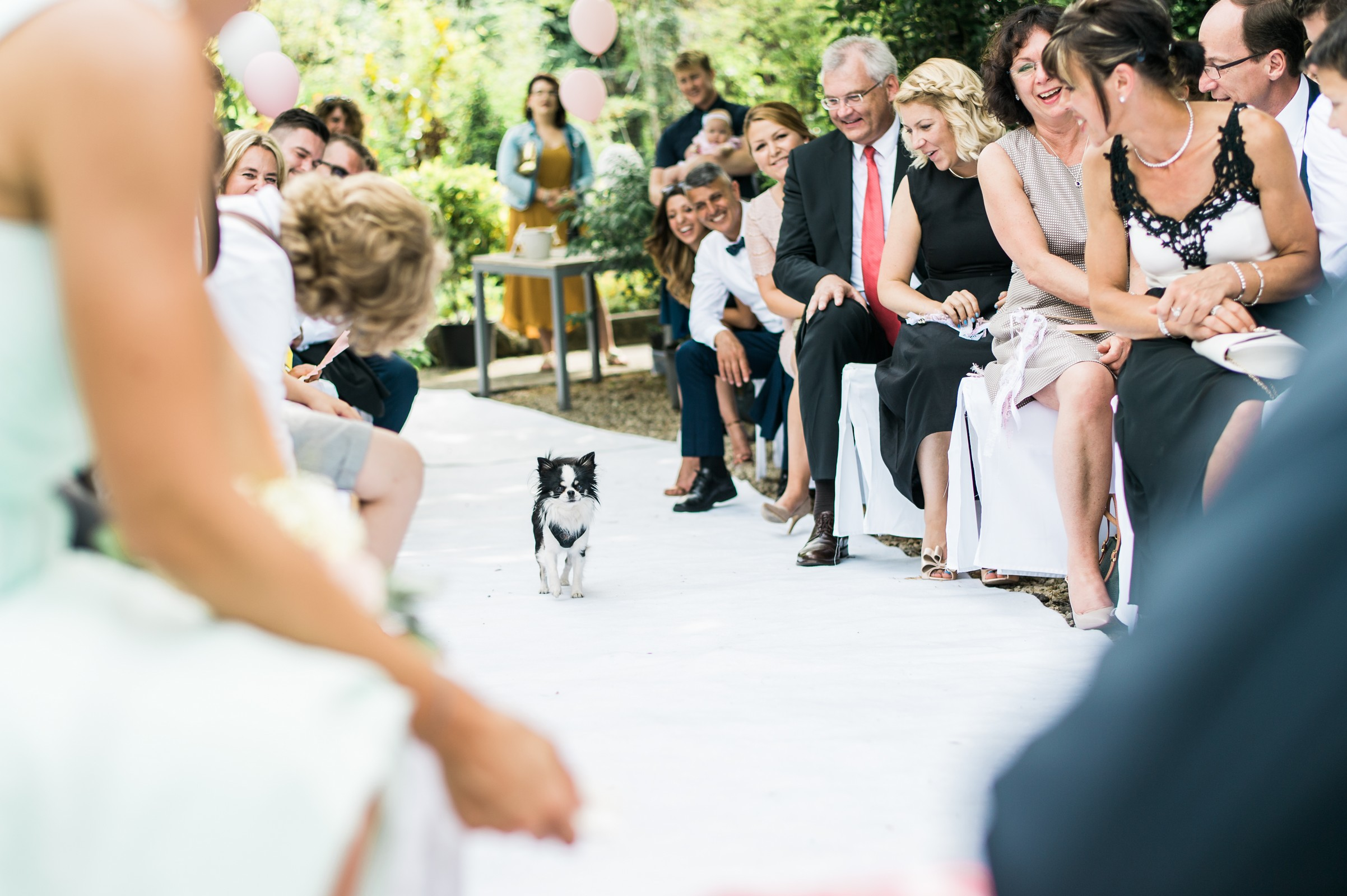 Hochzeit221.jpg