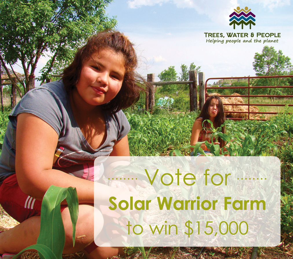 solar-warrior-farm.jpg