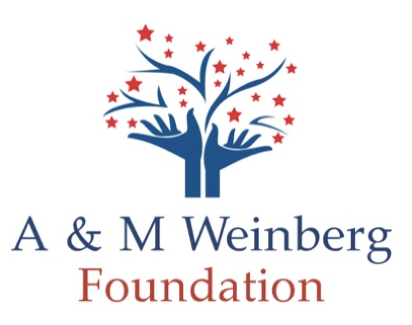 AM foundation Logo.png