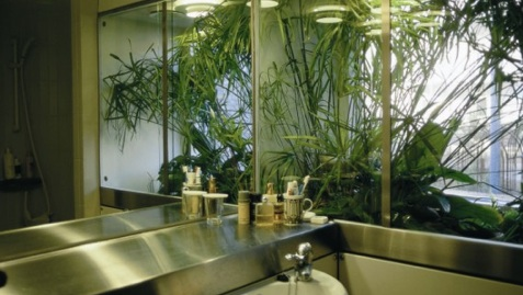 - bathroom design from late 90´ties - plants integrated in bathroom wall - not for decoration but for cleaning water - it was a project funded by the Danish Housing Ministry and called BLÅ HUS - and it worked, but was not as such accepted by the people using the bathroom. The integration of nature in daily life can fx. cause smell from time to time - or there can be other aspects of inconvenience which modern man does not accept - or I would rather call it RESPECT. At the same time these plants featured an element of natural beauty (also rinsed air btw) in an otherwise rather boring bathroom. Concept Niels Peter Flint developed with Jørgen Løgstrup and Friis & Moltke Architects - There are certain references to the project in this report developed for a similar but much larger project in Copenhagen a decade later -  click her for PDF see in particular page 53 where you see a similar system developed based on same concept by Transform Aps 1994 (Jørgen Løgstrup - and established with me in 1994 - I later left the company).
