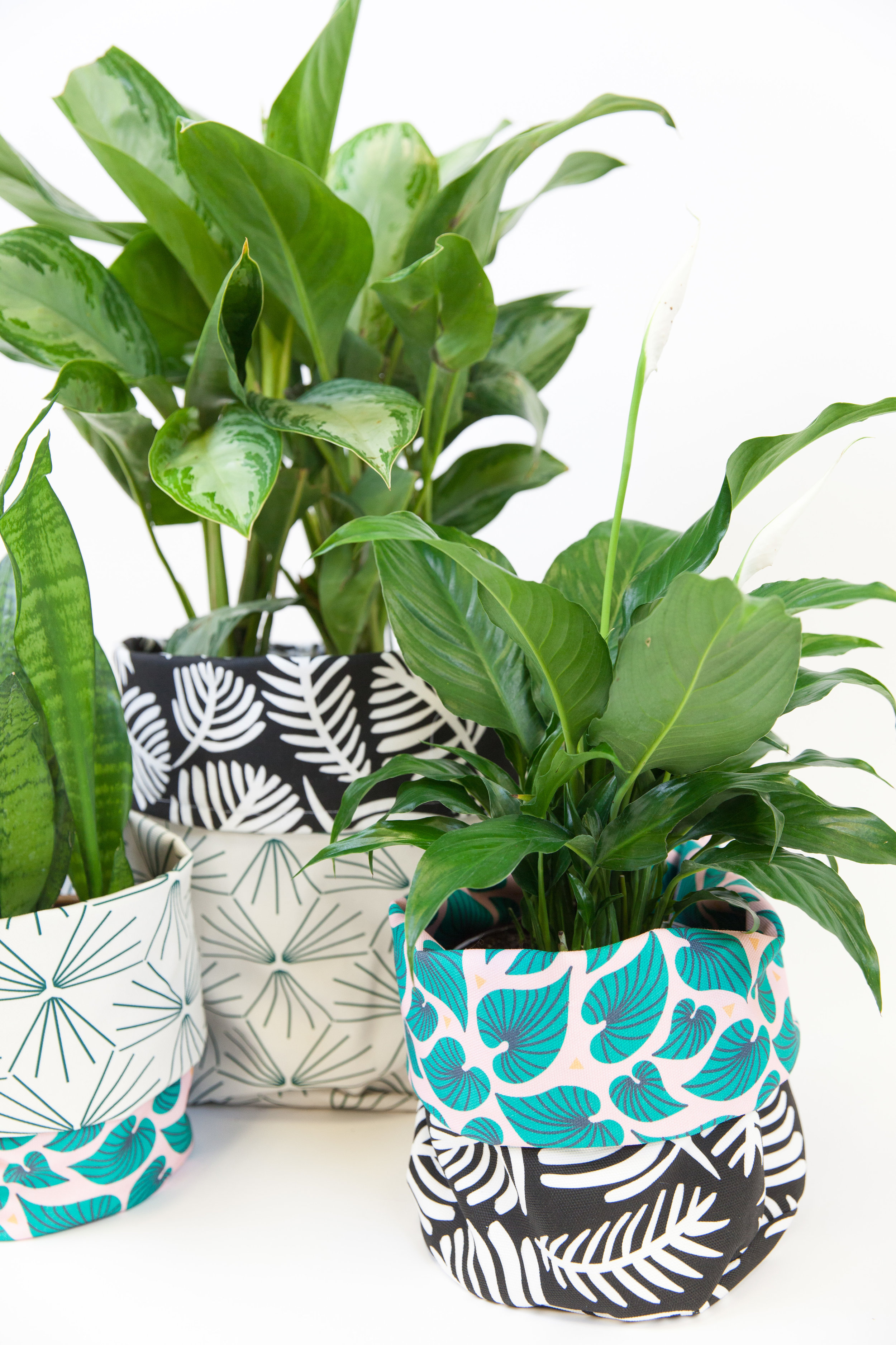 Fabric planters made using Sun Tile Marine by Holli Zollinger and Bahama Palm by lemonni
