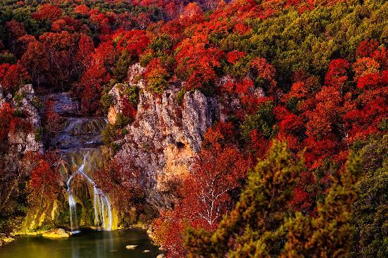 fall-is-beautiful-and.jpg