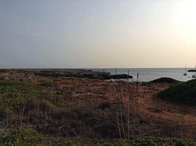 about Menorca 08.2017⠀⠀⠀⠀⠀⠀⠀⠀⠀ ⠀⠀⠀⠀⠀⠀⠀⠀⠀ ⠀⠀⠀⠀⠀⠀⠀⠀⠀ #alyseeyinchen #digitcarnet #nature #menorca #travel