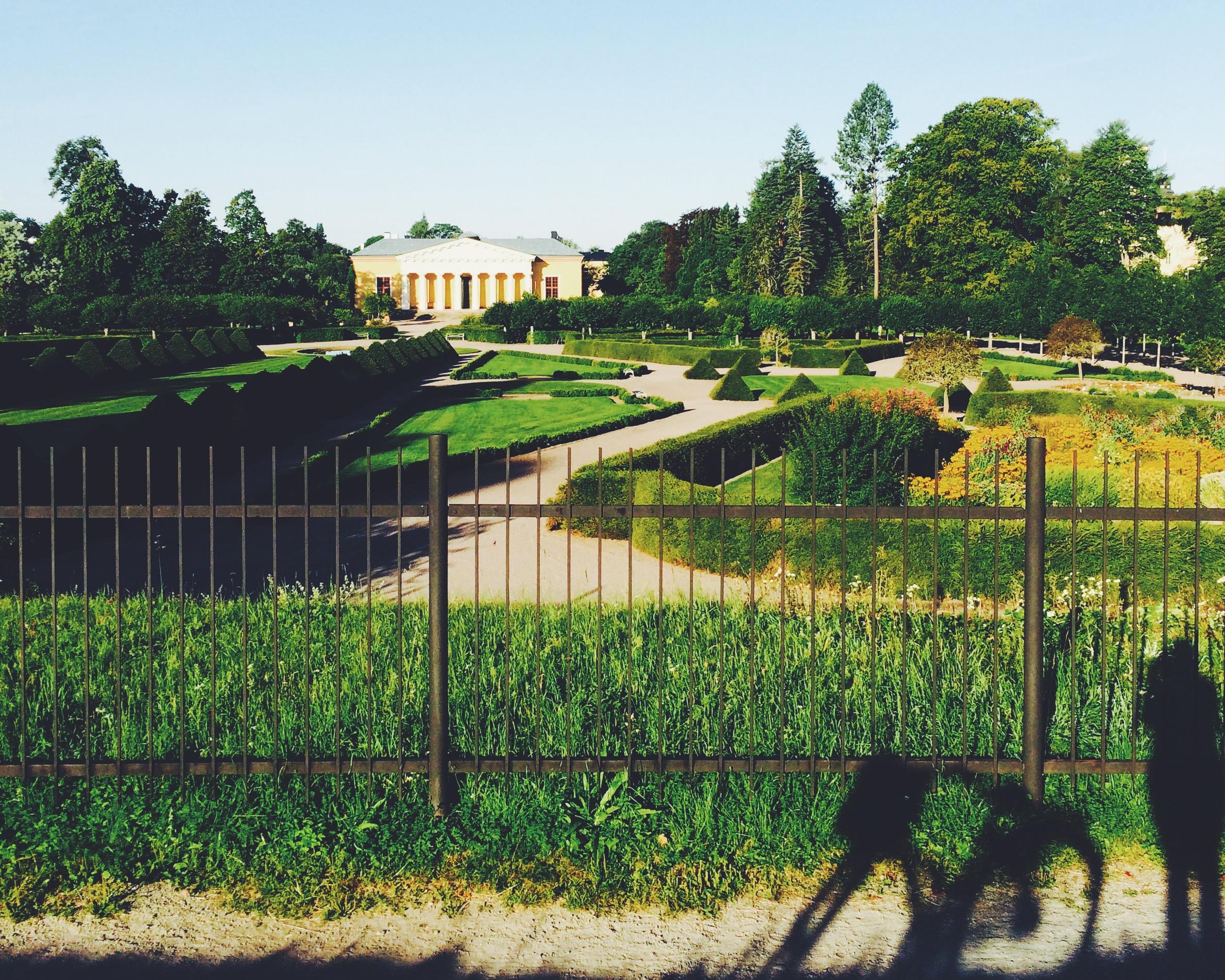 Botaniska trädgården yesterday morning